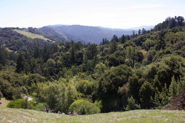 russian ridge view