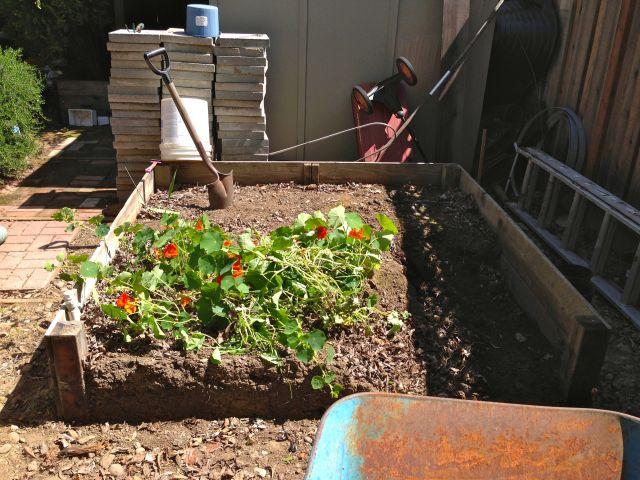 The future cutting garden.