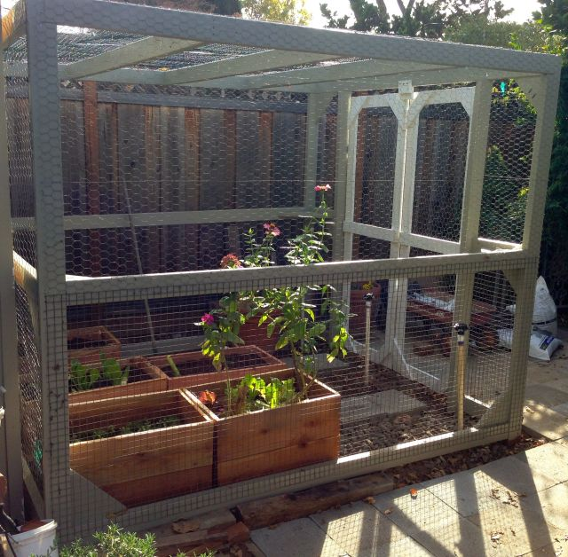 Planter boxes now in the cage.