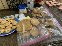 Snickerdoodles and Chocolate Chip